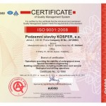 ISO 9004:2008